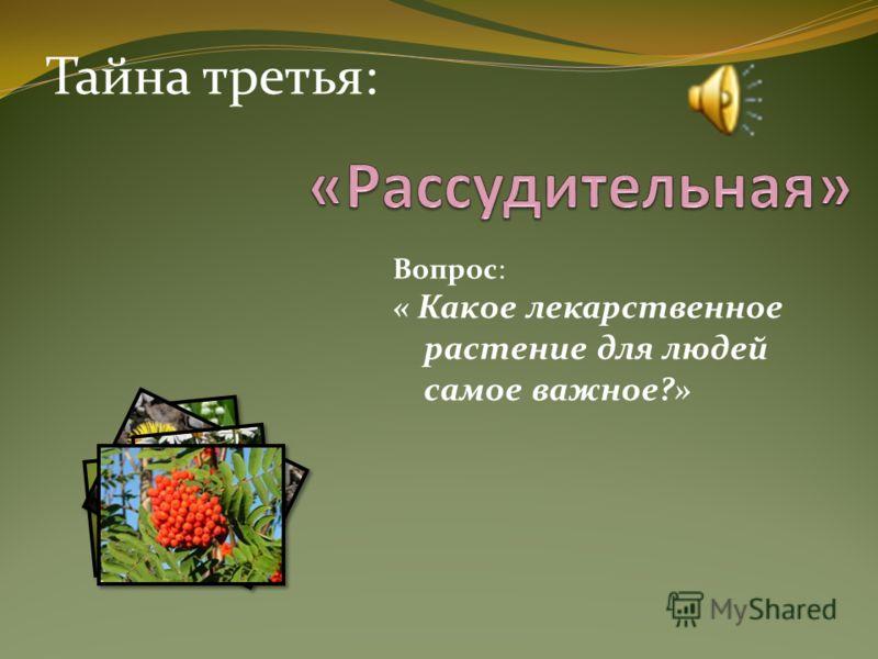Тайна третья: Вопрос: « Какое лекарственное растение для людей самое важное?»