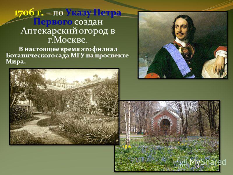 1706 г. – по Указу Петра Первого создан Аптекарский огород в г.Москве. В настоящее время это филиал Ботанического сада МГУ на проспекте Мира.