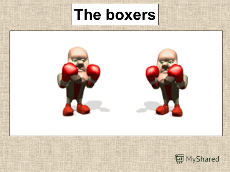 The boxers
