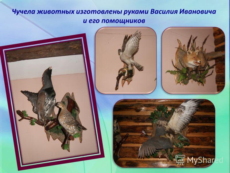 Чучела животных изготовлены руками Василия Ивановича и его помощников