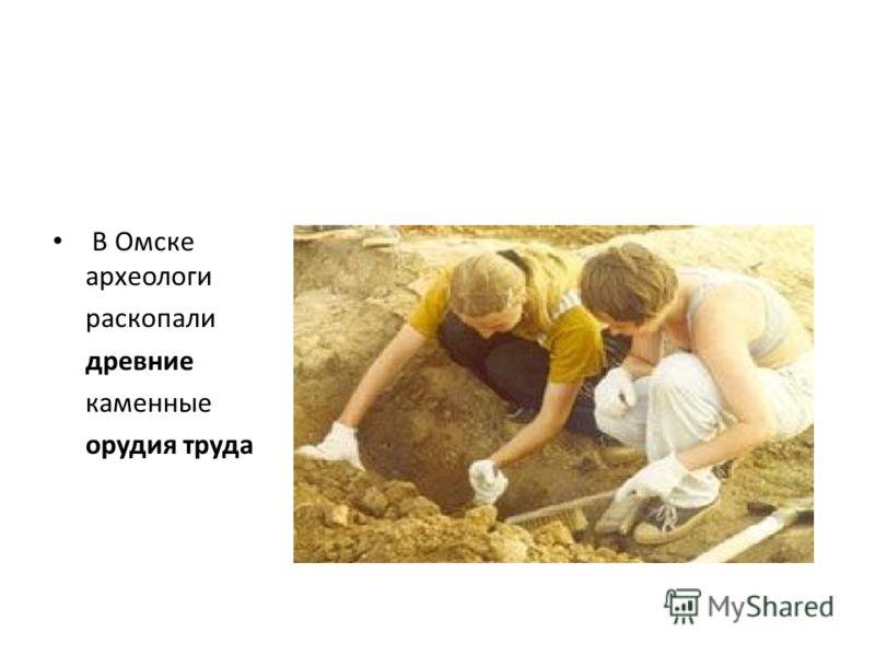 В Омске археологи раскопали древние каменные орудия труда