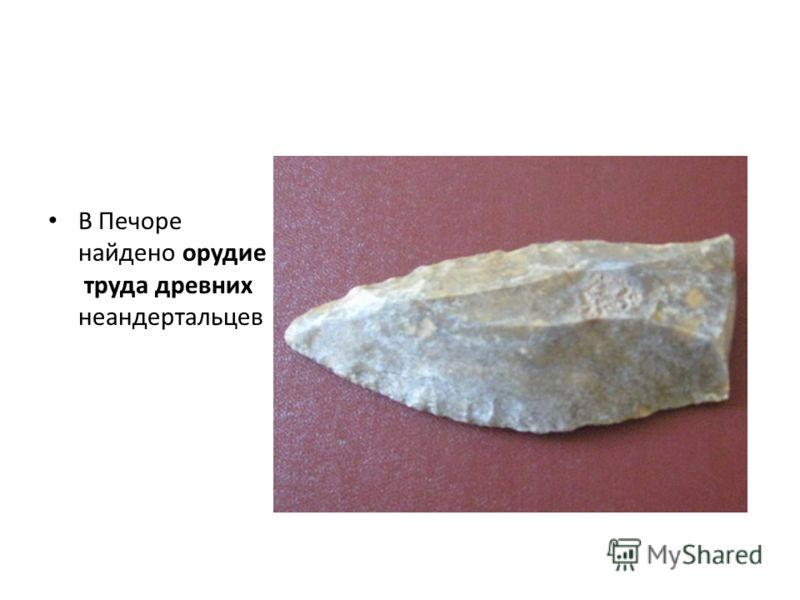 В Печоре найдено орудие труда древних неандертальцев