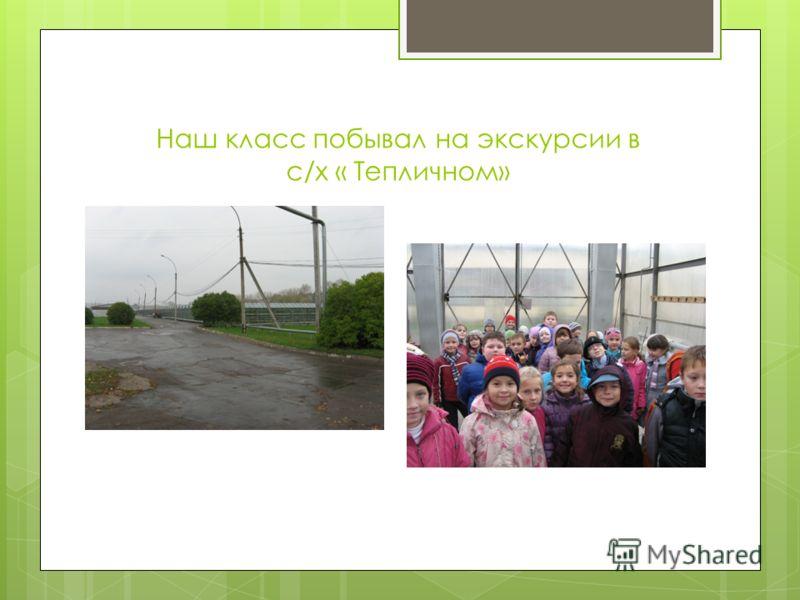 Наш класс побывал на экскурсии в с/х « Тепличном»