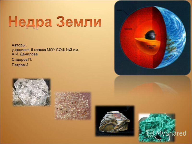 Авторы: учащиеся 6 класса МОУ СОШ 3 им. А.И. Данилова Сидоров П. Петров И.