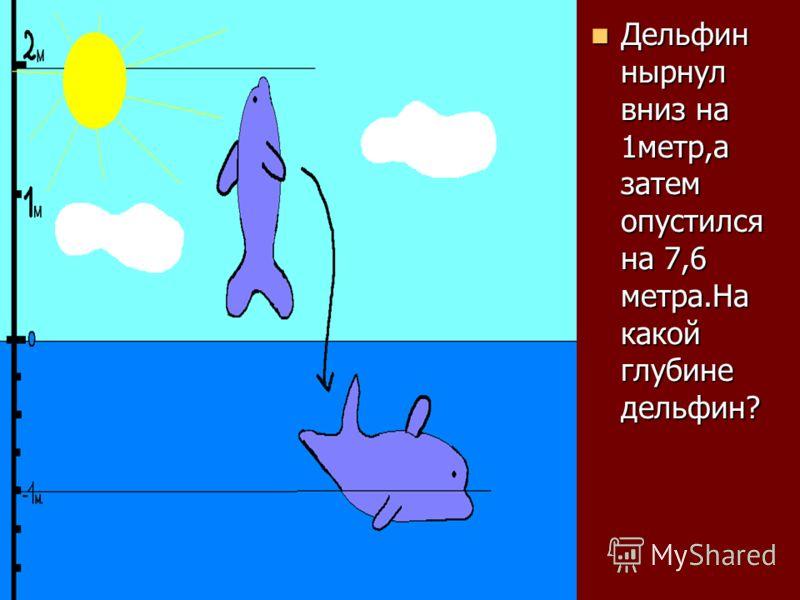 Дельфин нырнул вниз на 1метр,а затем опустился на 7,6 метра.На какой глубине дельфин? Дельфин нырнул вниз на 1метр,а затем опустился на 7,6 метра.На какой глубине дельфин?