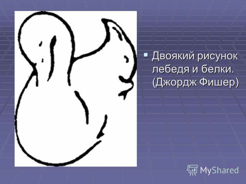 Двоякий рисунок лебедя и белки. (Джордж Фишер) Двоякий рисунок лебедя и белки. (Джордж Фишер)