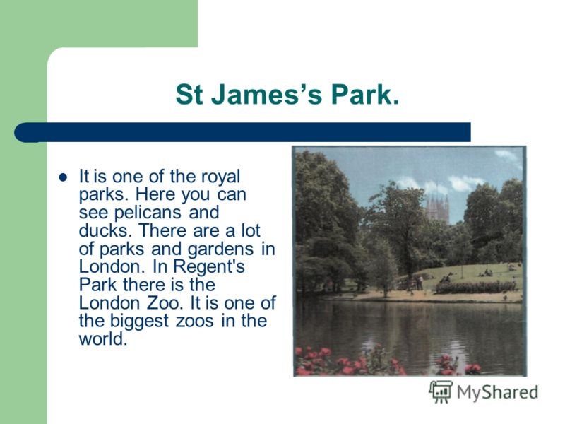 St Jamess Park. It is one of the royal parks. Here you can see pelicans and ducks. There are a lot of parks and gardens in London. In Regent's Park there is the London Zoo. It is one of the biggest zoos in the world.