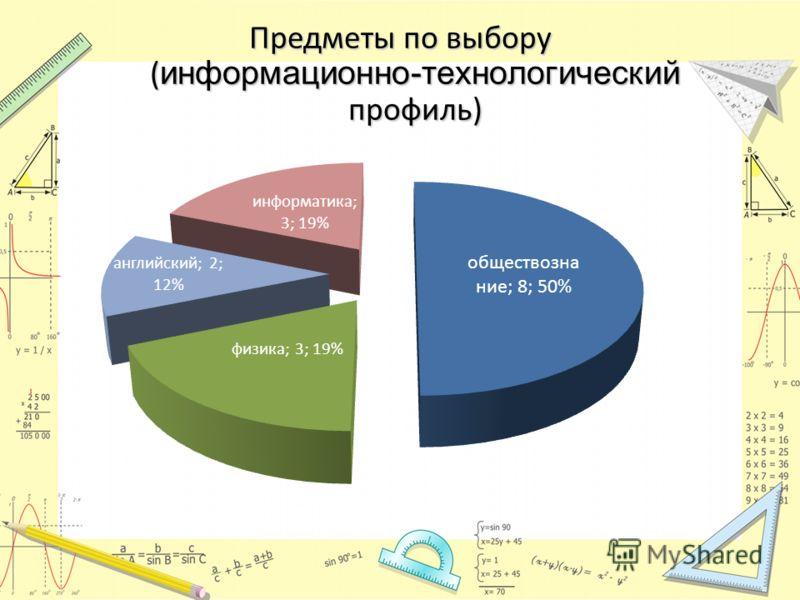 Предметы по выбору ( информационно-технологический профиль)