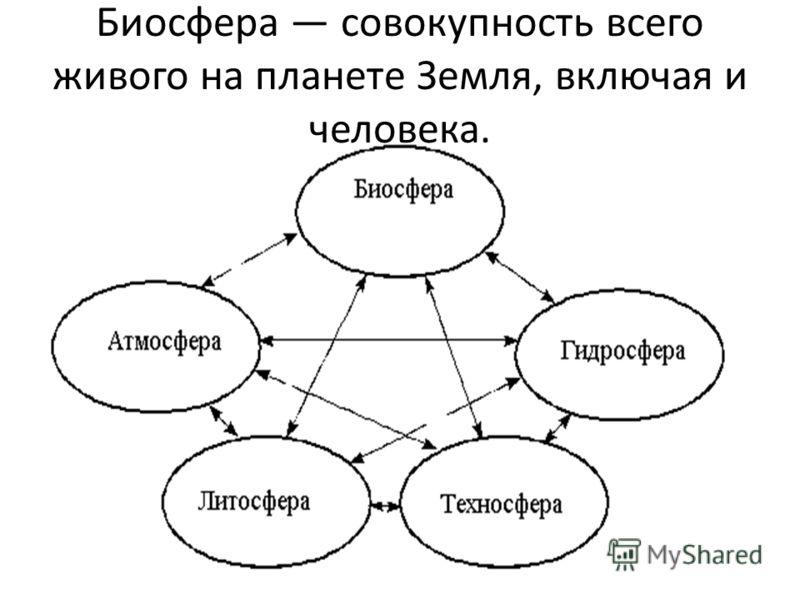 Биосфера совокупность всего живого на планете Земля, включая и человека.