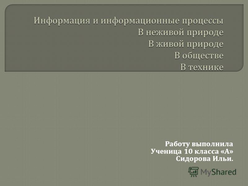 Работу выполнила Ученица 10 класса « А » Сидорова Ильи.
