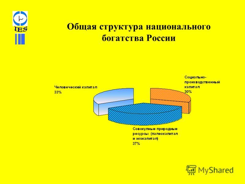 Общая структура национального богатства России