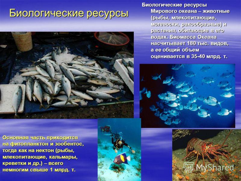 Биологические ресурсы Мирового океана – животные (рыбы, млекопитающие, моллюски, ракообразные) и растения, обитающие в его водах. Биомасса Океана насчитывает 180 тыс. видов, а ее общий объем оценивается в 35-40 млрд. т. Основная часть приходится на ф