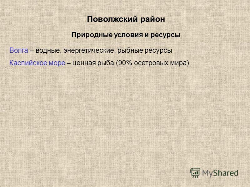 Поволжский район Волга – водные, энергетические, рыбные ресурсы Каспийское море – ценная рыба (90% осетровых мира) Природные условия и ресурсы