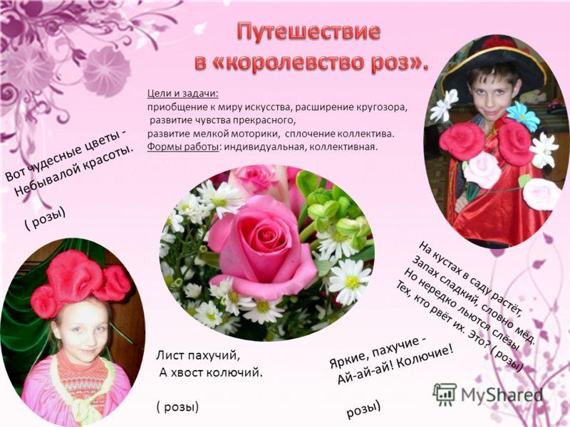 Вот чудесные цветы - Небывалой красоты. ( розы) Яркие, пахучие - Ай-ай-ай! Колючие! розы) Лист пахучий, А хвост колючий. ( розы) На кустах в саду растёт, Запах сладкий, словно мёд. Но нередко льются слёзы Тех, кто рвёт их. Это? ( розы) Цели и задачи: