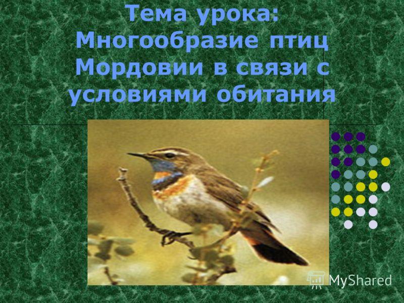 Тема урока: Многообразие птиц Мордовии в связи с условиями обитания