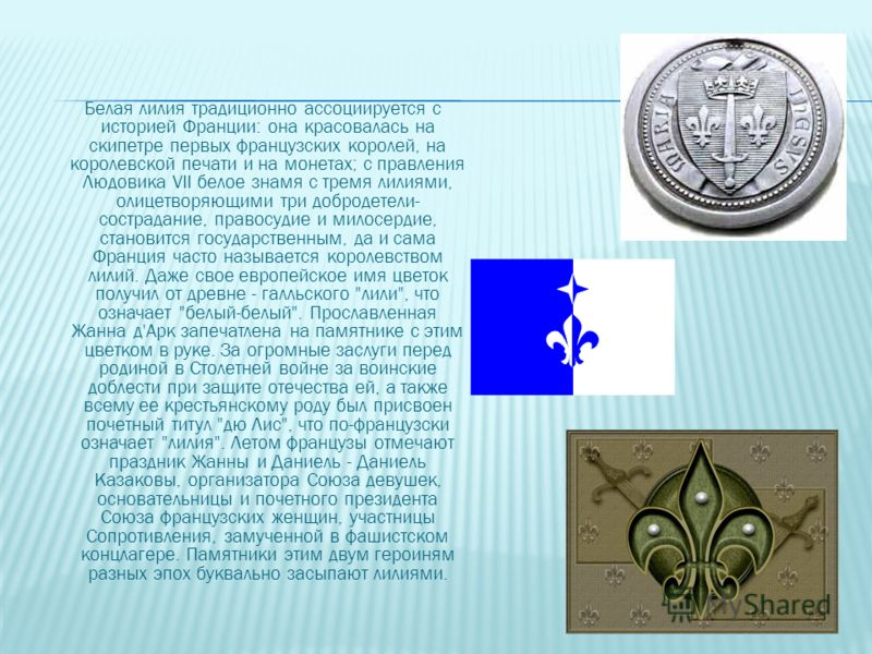 Белая лилия традиционно ассоциируется с историей Франции: она красовалась на скипетре первых французских королей, на королевской печати и на монетах; с правления Людовика VII белое знамя с тремя лилиями, олицетворяющими три добродетели- сострадание,
