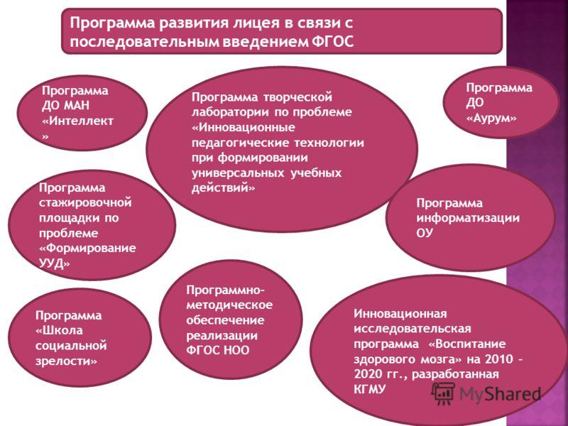 Программа развития лицея в связи с последовательным введением ФГОС Программа ДО МАН «Интеллект » Инновационная исследовательская программа «Воспитание здорового мозга» на 2010 - 2020 гг., разработанная КГМУ Программа творческой лаборатории по проблем
