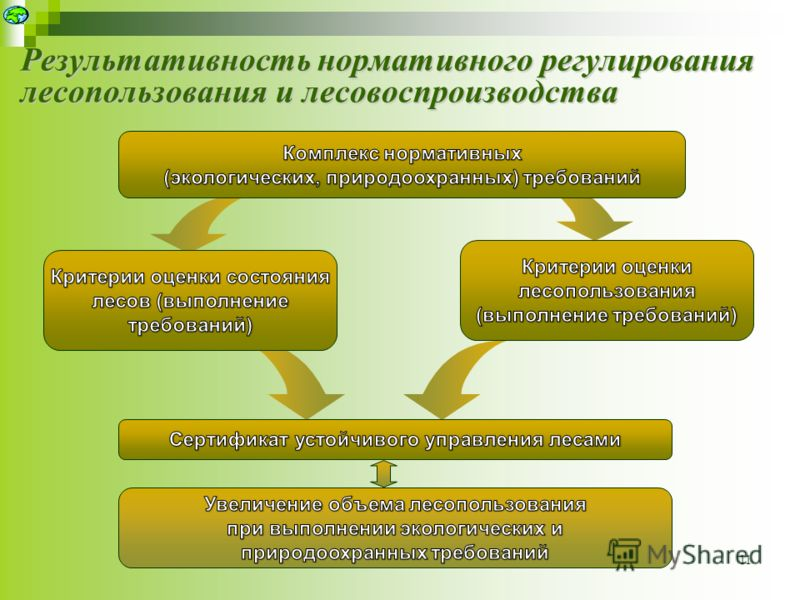 Результативность нормативного регулирования лесопользования и лесовоспроизводства 11