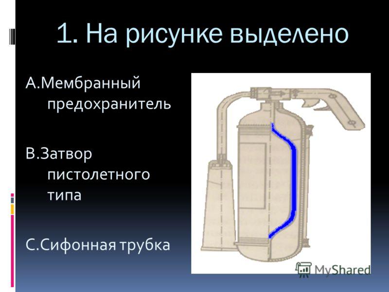 1. На рисунке выделено А.Мембранный предохранитель B.Затвор пистолетного типа C.Сифонная трубка