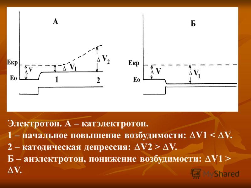 Электротон. А – катэлектротон. 1 – начальное повышение возбудимости: V1 < V. 2 – катодическая депрессия: V2 > V. Б – анэлектротон, понижение возбудимости: V1 > V.