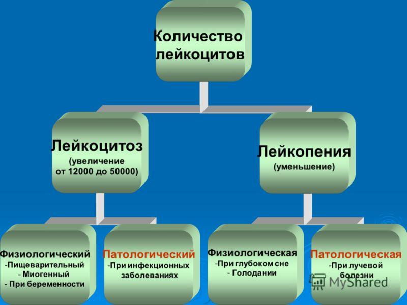 Лейкоцитоз фото