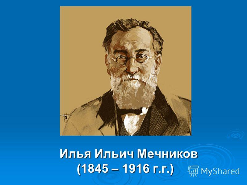 Илья Ильич Мечников Илья Ильич Мечников (1845 – 1916 г.г.) (1845 – 1916 г.г.)