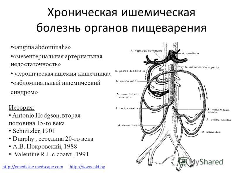 Хроническая ишемическая болезнь органов пищеварения «аngina abdominalis» «мезентериальная артериальная недостаточность» «хроническая ишемия кишечника» «абдоминальный ишемический синдром» История: Antonio Hodgson, вторая половина 15-го века Schnitzler
