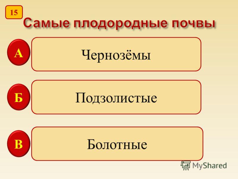 Чернозёмы Подзолистые Болотные В Б А 15