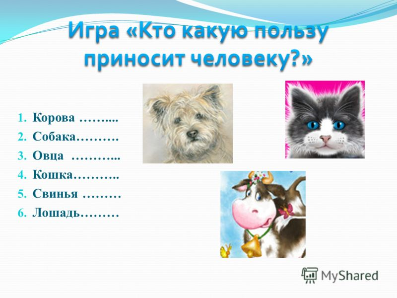 1. Корова …….... 2. Собака………. 3. Овца ………... 4. Кошка……….. 5. Свинья ……… 6. Лошадь………