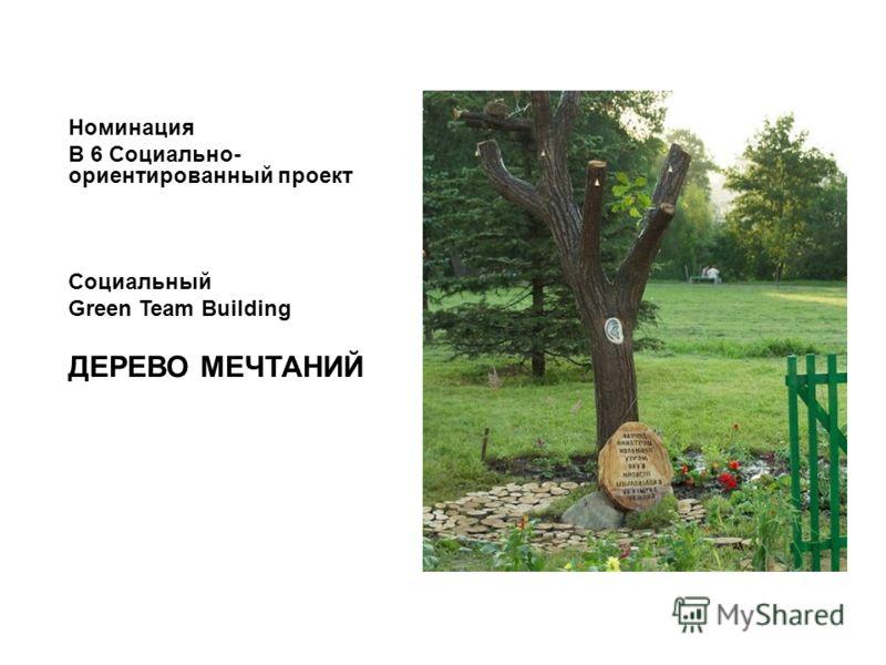 Номинация B 6 Социально- ориентированный проект Социальный Green Team Building ДЕРЕВО МЕЧТАНИЙ