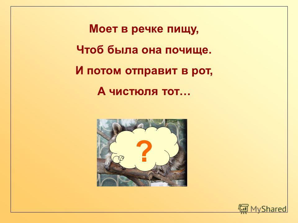 Моет в речке пищу, Чтоб была она почище. И потом отправит в рот, А чистюля тот… ?