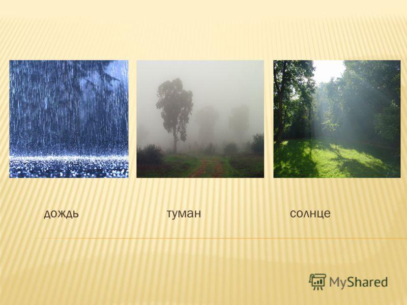 дождь туман солнце