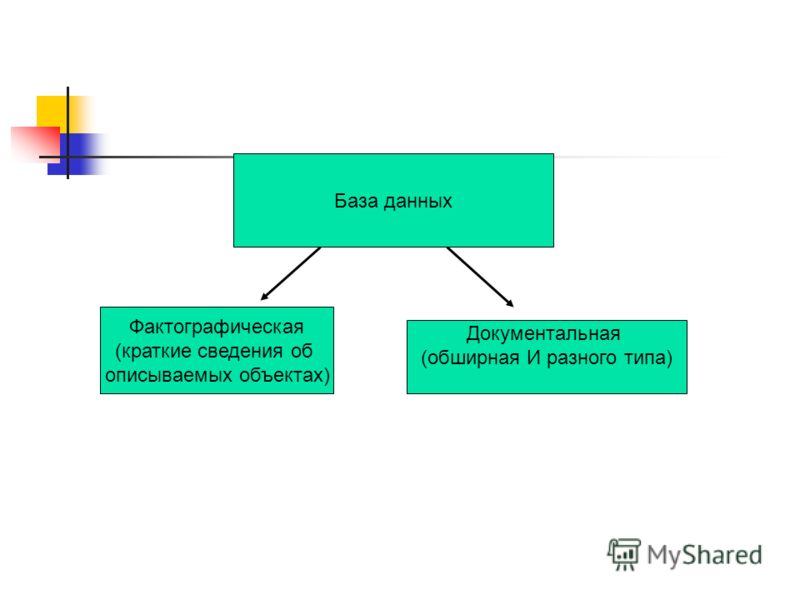 База данных Фактографическая (краткие сведения об описываемых объектах) Документальная (обширная И разного типа)
