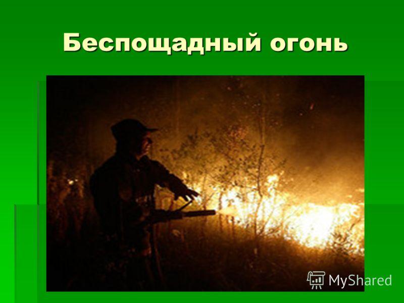 Беспощадный огонь