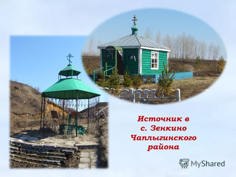 Источник в с. Зенкино Чаплыгинского района