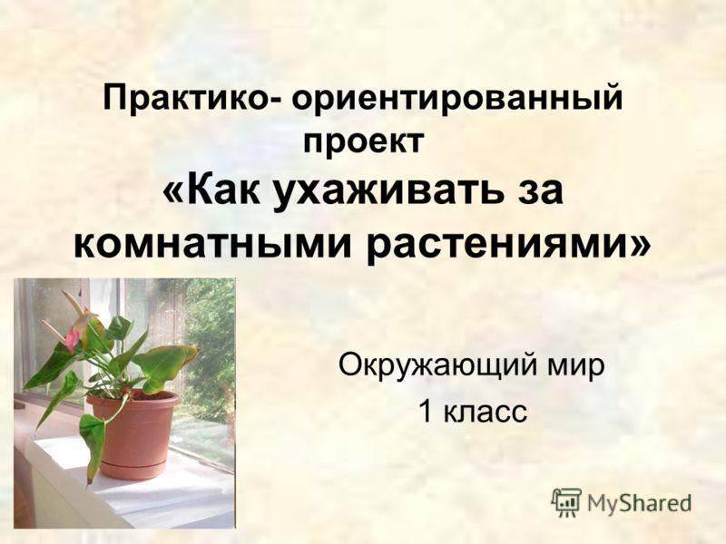 Практико- ориентированный проект «Как ухаживать за комнатными растениями» Окружающий мир 1 класс