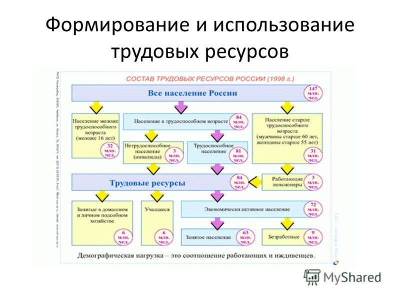 Формирование и использование трудовых ресурсов