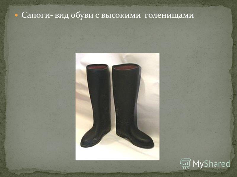 Сапоги- вид обуви с высокими голенищами