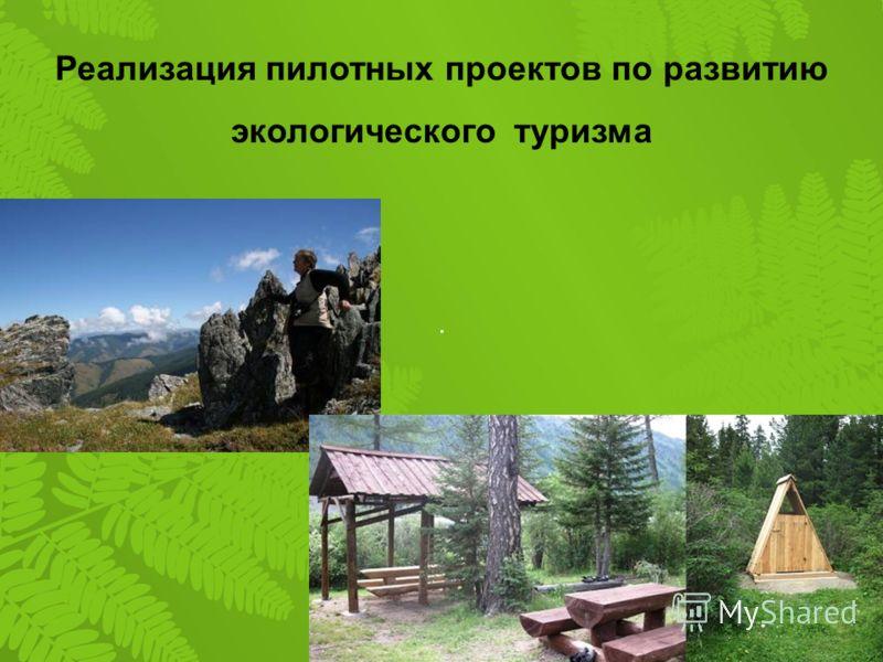 Реализация пилотных проектов по развитию экологического туризма