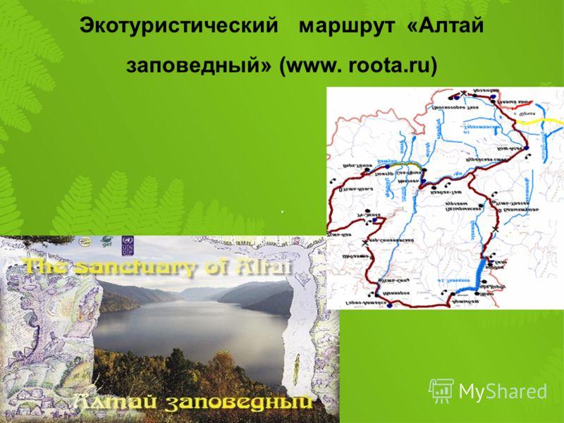 Экотуристический маршрут «Алтай заповедный» (www. roota.ru)