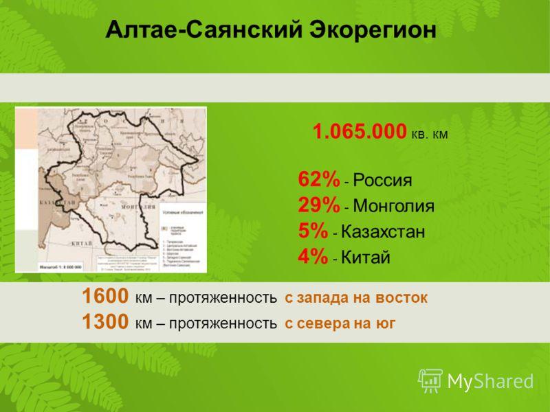 1.065.000 кв. км 62% - Россия 29% - Монголия 5% - Казахстан 4% - Китай 1600 км – протяженность с запада на восток 1300 км – протяженность с севера на юг Алтае-Саянский Экорегион