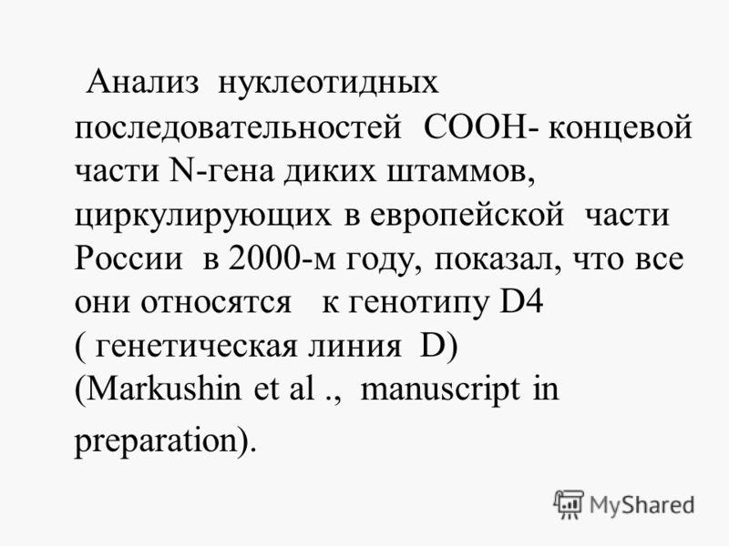 Анализ нуклеотидных последовательностей СООН- концевой части N-гена диких штаммов, циркулирующих в европейской части России в 2000-м году, показал, что все они относятся к генотипу D4 ( генетическая линия D) (Markushin et al., manuscript in preparati