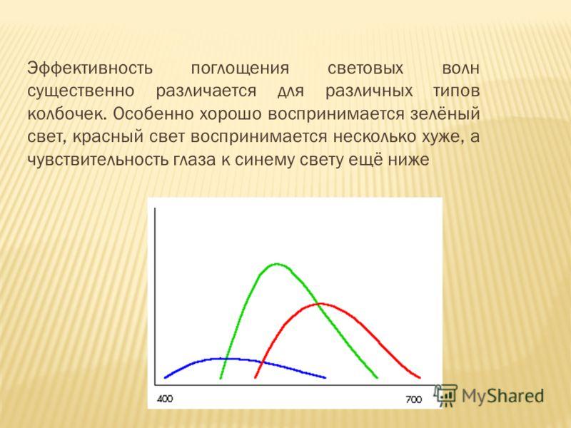 Эффективность поглощения световых волн существенно различается для различных типов колбочек. Особенно хорошо воспринимается зелёный свет, красный свет воспринимается несколько хуже, а чувствительность глаза к синему свету ещё ниже