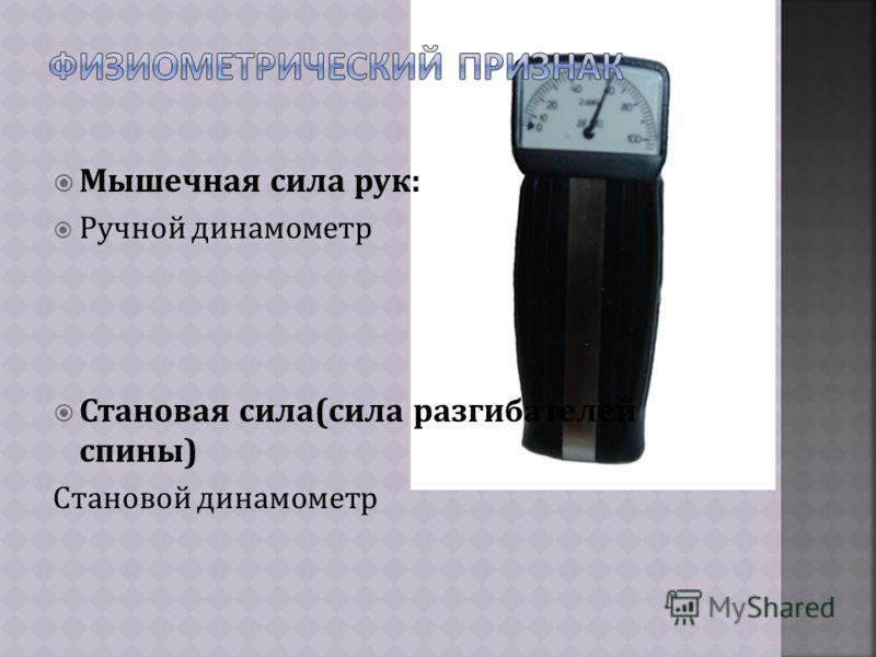 Мышечная сила рук: Ручной динамометр Становая сила(сила разгибателей спины) Становой динамометр