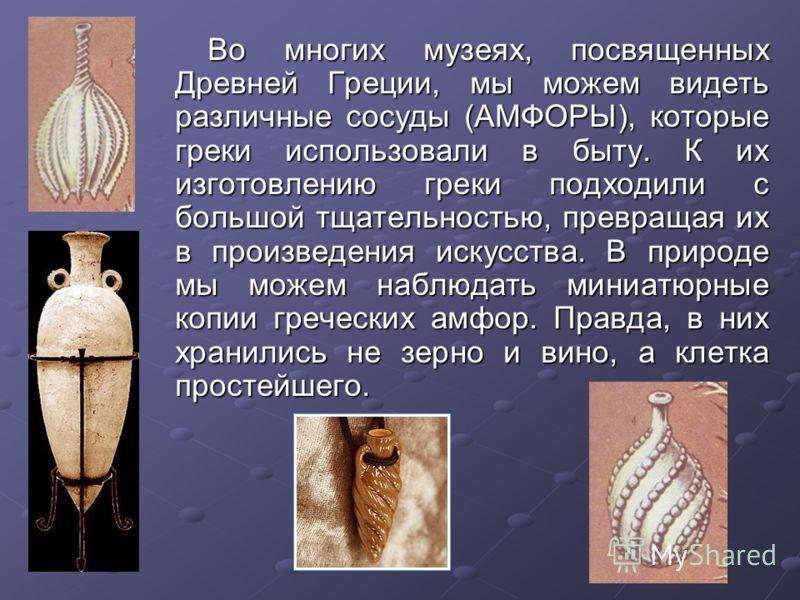 Во многих музеях, посвященных Древней Греции, мы можем видеть различные сосуды (АМФОРЫ), которые греки использовали в быту. К их изготовлению греки подходили с большой тщательностью, превращая их в произведения искусства. В природе мы можем наблюдать
