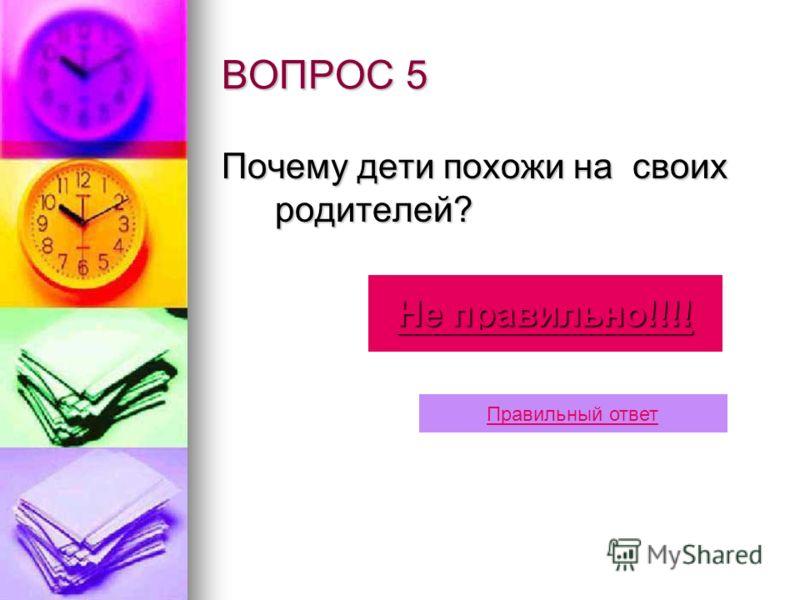 Ответ 4 … мегамир