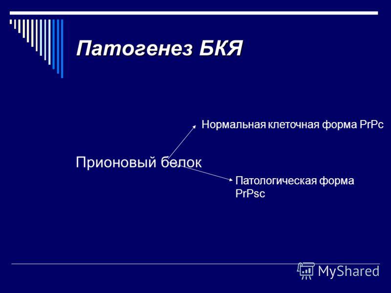 Патогенез БКЯ Прионовый белок Нормальная клеточная форма PrPc Патологическая форма PrPsc