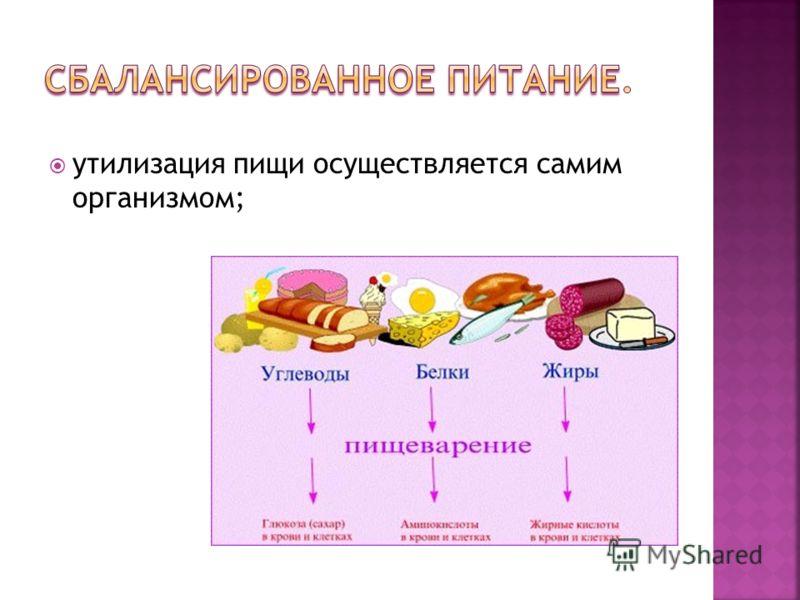 утилизация пищи осуществляется самим организмом;