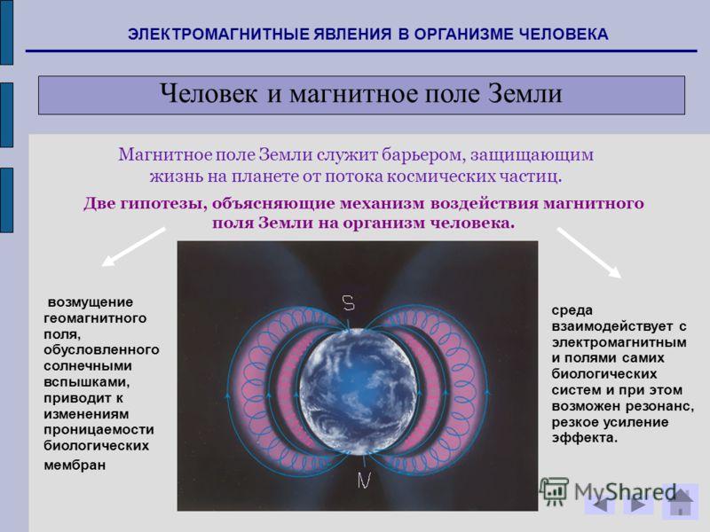 Магнитное поле Земли служит барьером, защищающим жизнь на планете от потока космических частиц. Две гипотезы, объясняющие механизм воздействия магнитного поля Земли на организм человека. возмущение геомагнитного поля, обусловленного солнечными вспышк
