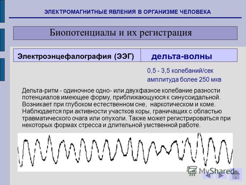 ЭЛЕКТРОМАГНИТНЫЕ ЯВЛЕНИЯ В ОРГАНИЗМЕ ЧЕЛОВЕКА Биопотенциалы и их регистрация дельта-волны Дельта-ритм - одиночное одно- или двухфазное колебание разности потенциалов имеющее форму, приближающуюся к синусоидальной. Возникает при глубоком естественном